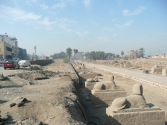 Avenue Of Sphinxes Towards Luxor